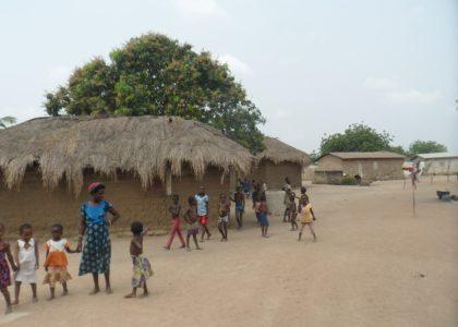 "Centre-Presse : ""Partir au Togo pour reboiser 7 hectares"""